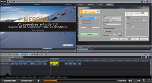 MAGIX Video deluxe 2016 Video-Lernkurs u.a. mit proDAD Mercalli V4